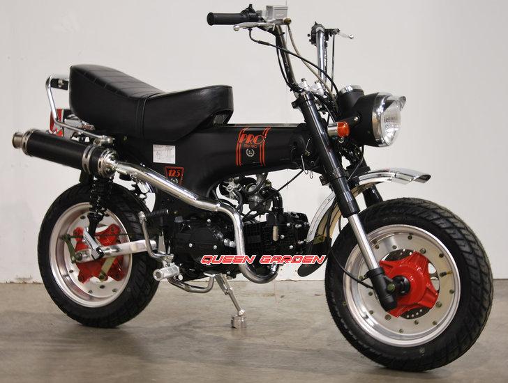 Skymax-Pro,-50cc-
